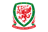 Pic of Top 10 Welsh Football Matches